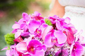 Scarlett's Flowers