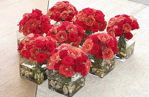 Tmx 1376411986123 6a00e5508cf2b4883300e55349843c8833 500pi Bradenton, Florida wedding florist
