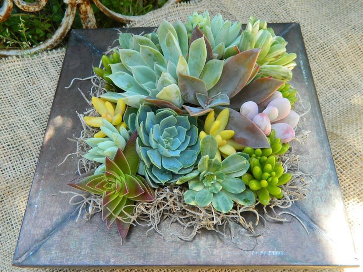 Tmx 1376412517853 Ilfullxfull.324371850 Bradenton, Florida wedding florist