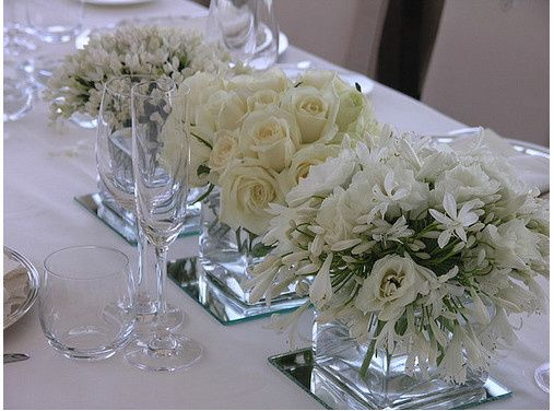 Tmx 1376413298574 Snow White Square Short Wedding Centerpieces Pictures Bradenton, Florida wedding florist
