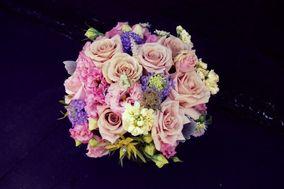 Koat Floral