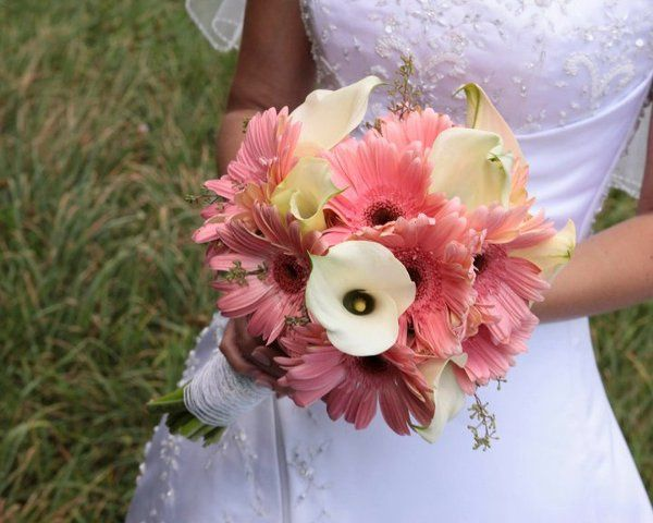 brides bouquet is a handheld bouquet with pink gerbera daisies with white calla lillies