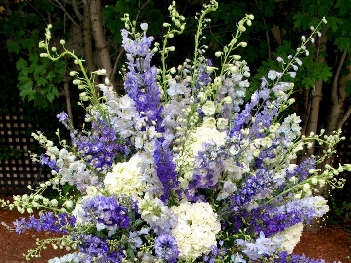 Tmx 1455655288251 Dsc0288 Stoneham, Massachusetts wedding florist