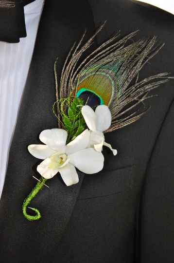 DendrobewithpeacockfeatherBoutonniere