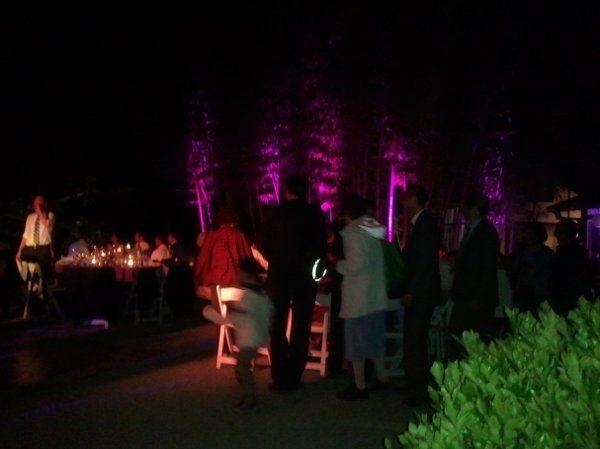 Wedding at Hakone Gardens in Saratoga. Bamboo Lighting.
