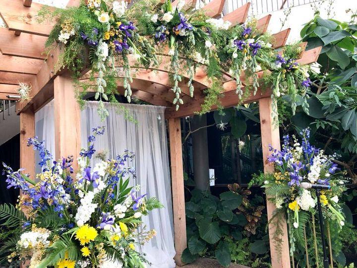 Tmx 6 51 28622 Urbandale, Iowa wedding florist