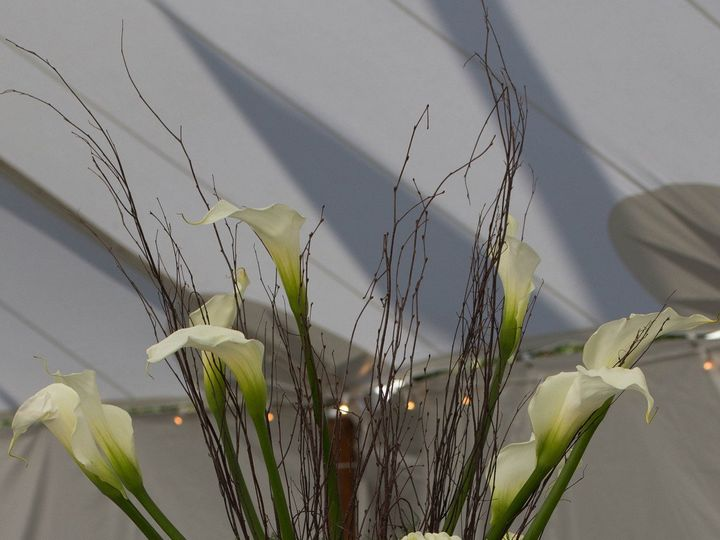 Tmx 1458065963856 Img9239 Trappe, Maryland wedding florist