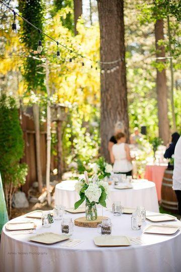 A Reception in the Garden