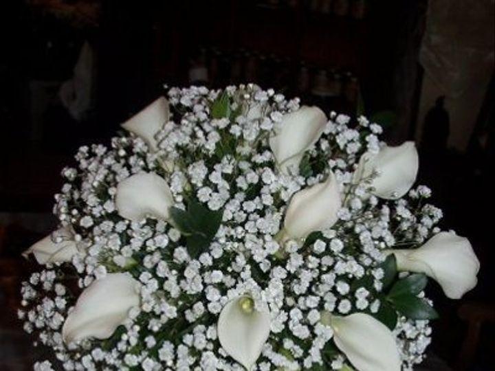 Tmx 1313589205194 N1235700862304217017458235 Johnstown wedding florist