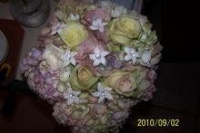 Tmx 1313589205974 Unnamed Johnstown wedding florist