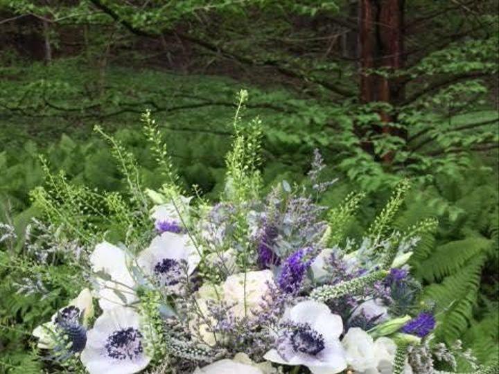 Tmx 1530820334 6b25210abfac0f2f 1530820333 Ca6f208f96544771 1530820330352 1 Unnamed Julian, PA wedding florist