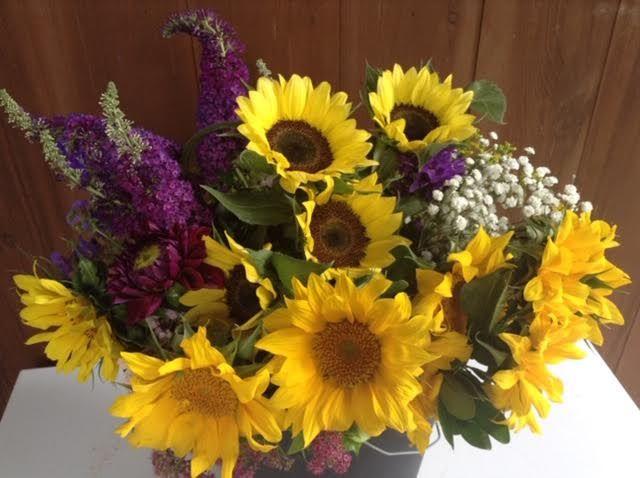 Tmx 1 51 637722 V2 Julian, PA wedding florist