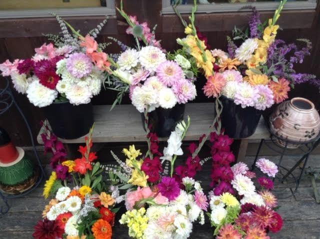Tmx 4 51 637722 V3 Julian, PA wedding florist