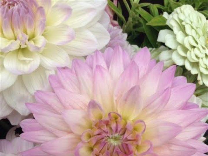 Tmx 8 51 637722 Julian, PA wedding florist