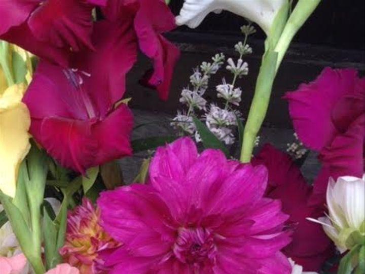 Tmx 9 51 637722 Julian, PA wedding florist
