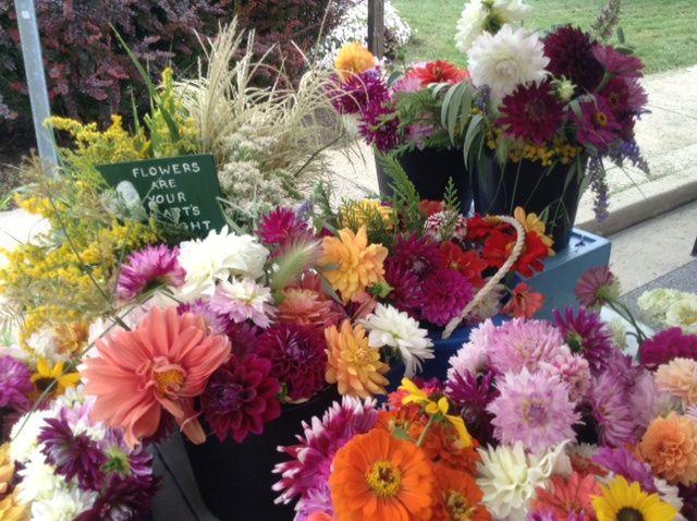 Tmx Deb Flower 2 51 637722 Julian, PA wedding florist