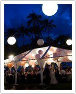 800x800 1265309671329 weddingtent