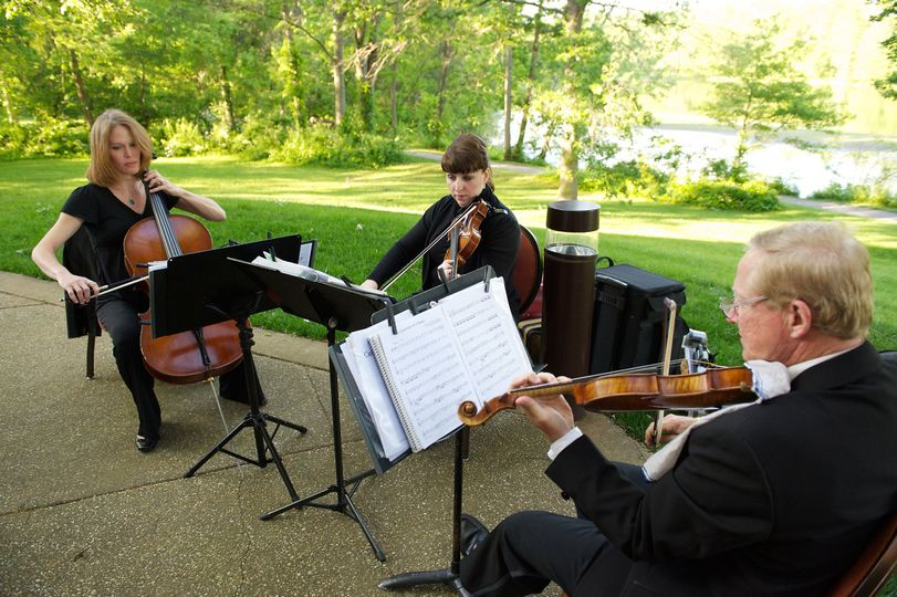 string trio in columbia