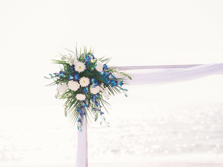 Tmx Brittanie Christopher 14 51 441822 160917313693427 Saint Petersburg, FL wedding planner