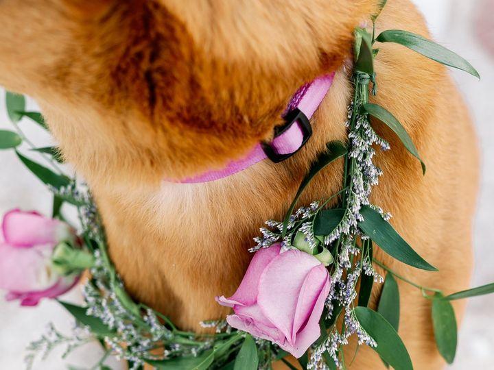 Tmx Kate Brad Gallery 79 51 441822 160917348095623 Saint Petersburg, FL wedding planner