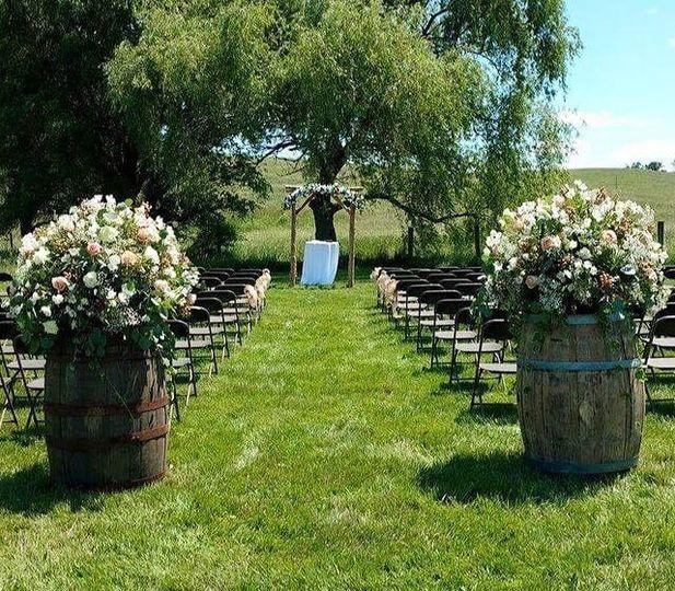 Wine Barrels and Arbor