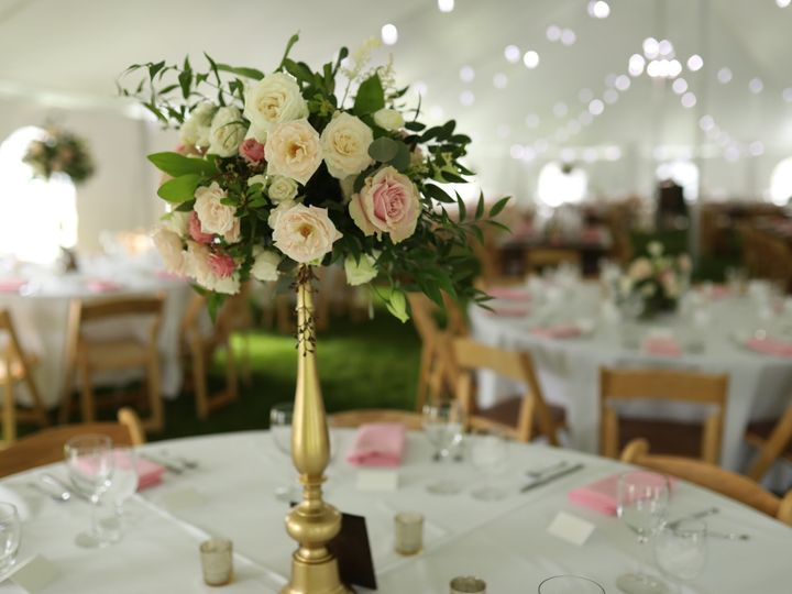 Tmx Img 4467 51 776822 158305006214700 Bozeman, MT wedding planner