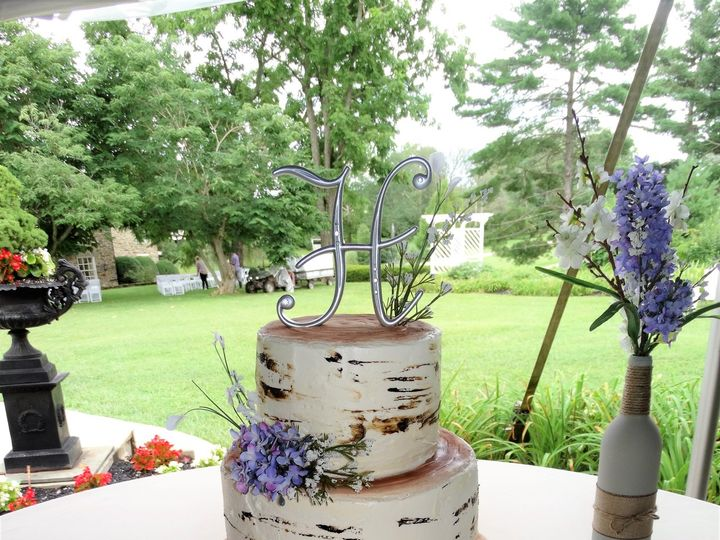Tmx Birch Tree 2 51 178822 Frederick, MD wedding cake
