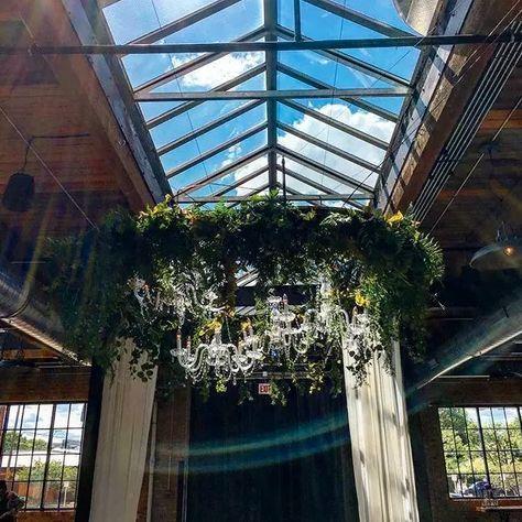 Plant decor and hanging lights