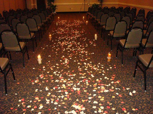Tmx 1206541421125 DSC00400 Rocky Mount wedding planner
