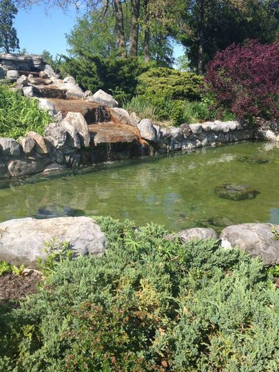 The Lily Pond, Thornden Park, Syracuse NY