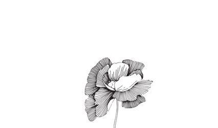 Fairytale Flowers 1