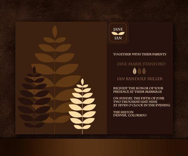 Tmx 1232313033046 RoryInvite Parker wedding invitation