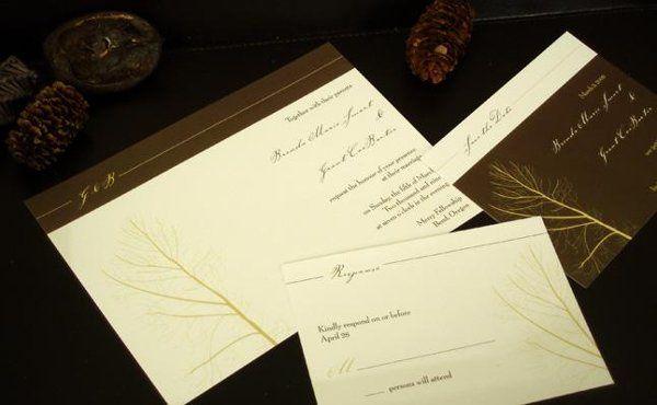Tmx 1234308996734 Alexa Parker wedding invitation