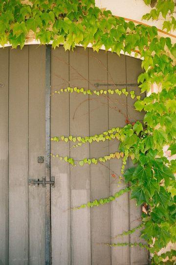 Vineyard House entrance