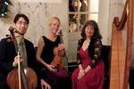 Amethyst Trio image