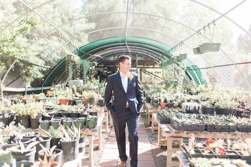 Groom in the greenhouse