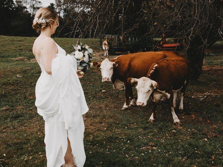 Tmx Carolynjorgensenphotography 31 51 984132 157931052264337 Alburtis, PA wedding photography