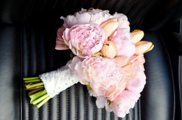Tmx 1320164360375 DSC4073 Greenacres wedding florist