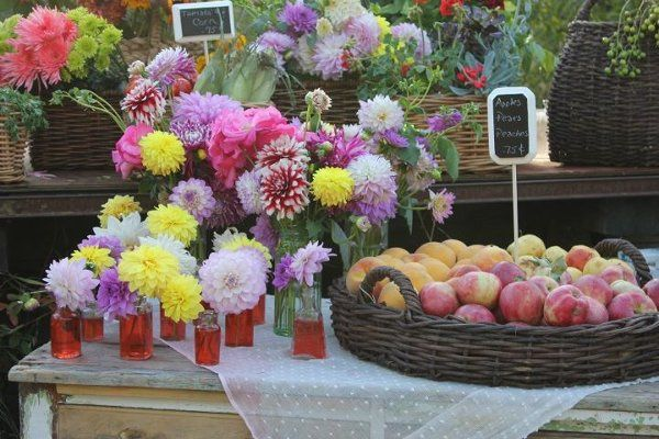 Tmx 1320164529859 295813255554014481700100000813119186644362665998359n Greenacres wedding florist