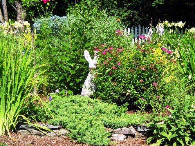 Rabbit statue by the plants