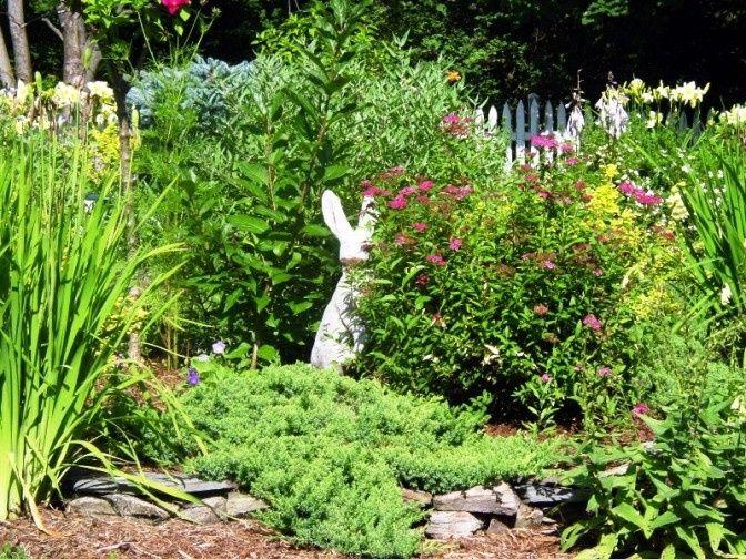 Tmx 1415836536518 Lilac Inn Garden Bunny Vt Brandon, Vermont wedding venue