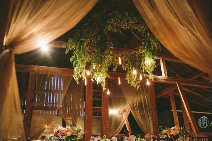 { Oleander } Florals & Events