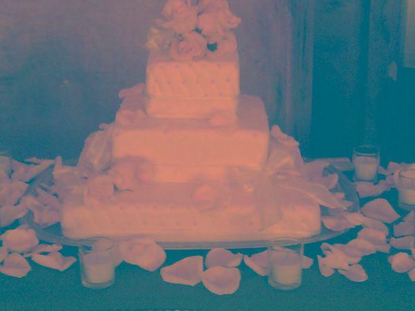 Tmx 1316064233417 Whtpetals Fontana wedding cake