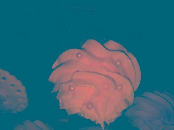 Tmx 1316064331853 Whitecc Fontana wedding cake