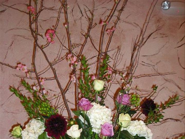 Tmx 1268366461536 175 Knoxville, TN wedding florist