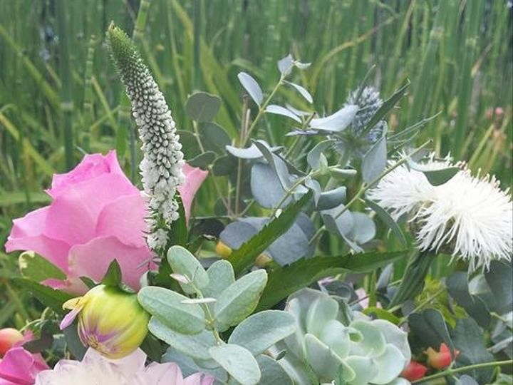 Tmx 1484700616579 Wildflower With Succulents Knoxville, TN wedding florist
