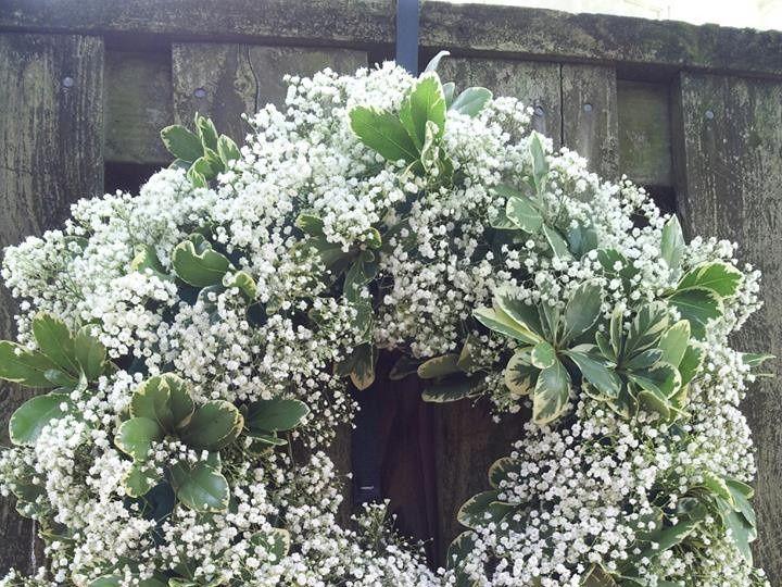 Tmx 1484704020232 971647101514021434318131734833648n Knoxville, TN wedding florist