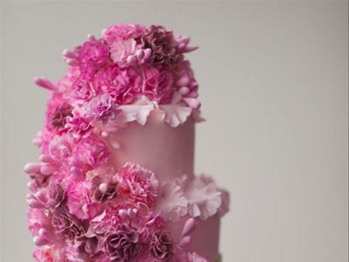 Tmx 1361292205257 Carnations Jackson Heights wedding cake