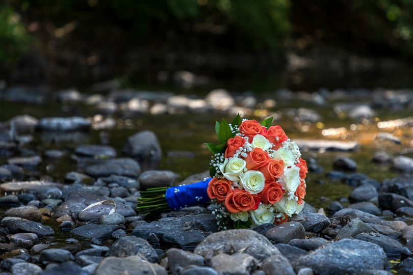 LifeSlice Photography