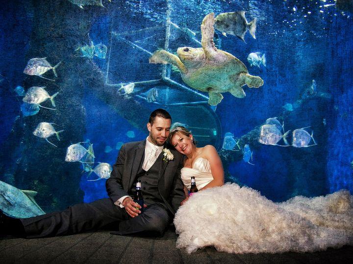Tmx 1499087075548 537 Williamsburg, VA wedding photography